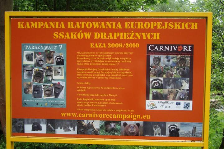 """Parszywa Dwunastka"" - kampania Carnivore"