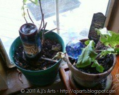 Beer Bottle Planter