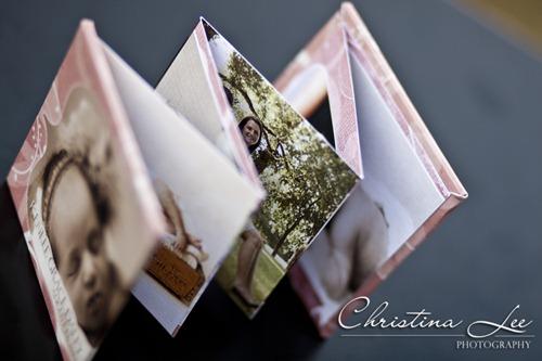 Christina Lee Accordion Book