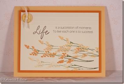 life orange