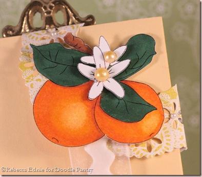 oranges bookmark closeup