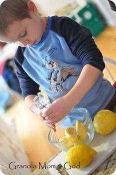 preserving lemons 006