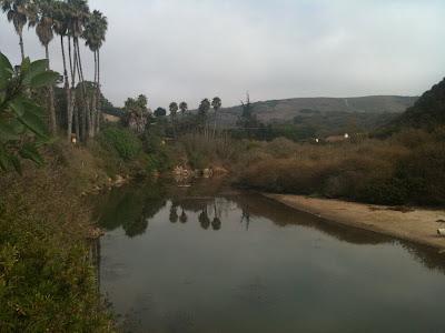 Gray day in SB