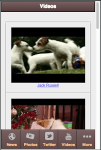 Jack Russell Super Dog screenshot 1