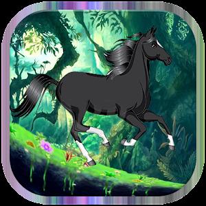 Dark horse run
