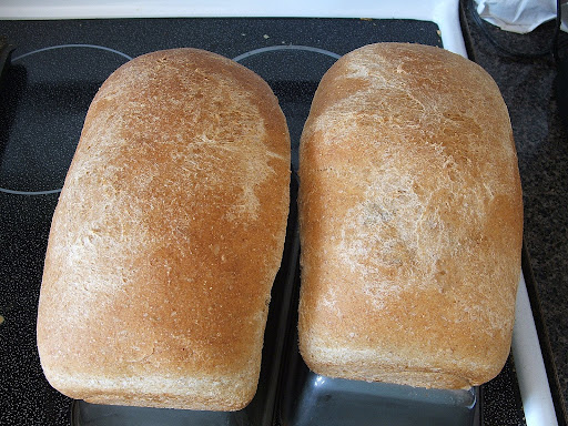 Soaked wheat is ground into a fresh flour for this tasty 100% whole wheat bread.