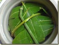 preserving olives 3_1_1
