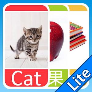 學習閃咭 (Lite)