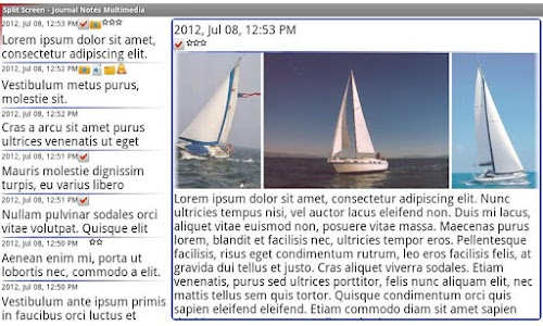 Diary Notes Multimedia screenshot 1