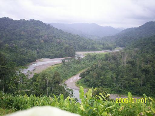 Valle del Rio Changuinola