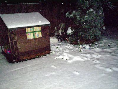 Snow pic 2