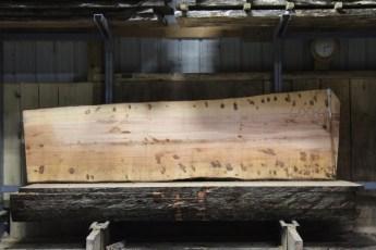 "600  Ambrosia Maple - 6 8/4x 37"" x 29"" Wide x  10'  Long"