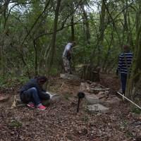 Porządkowanie cmentarza ewangelickiego w Oborach