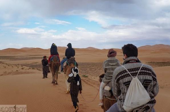 sahara desert-20
