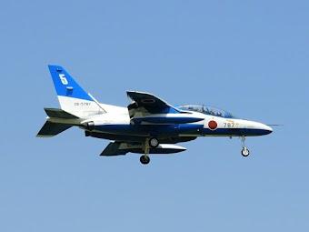 BI-787-5.JPG