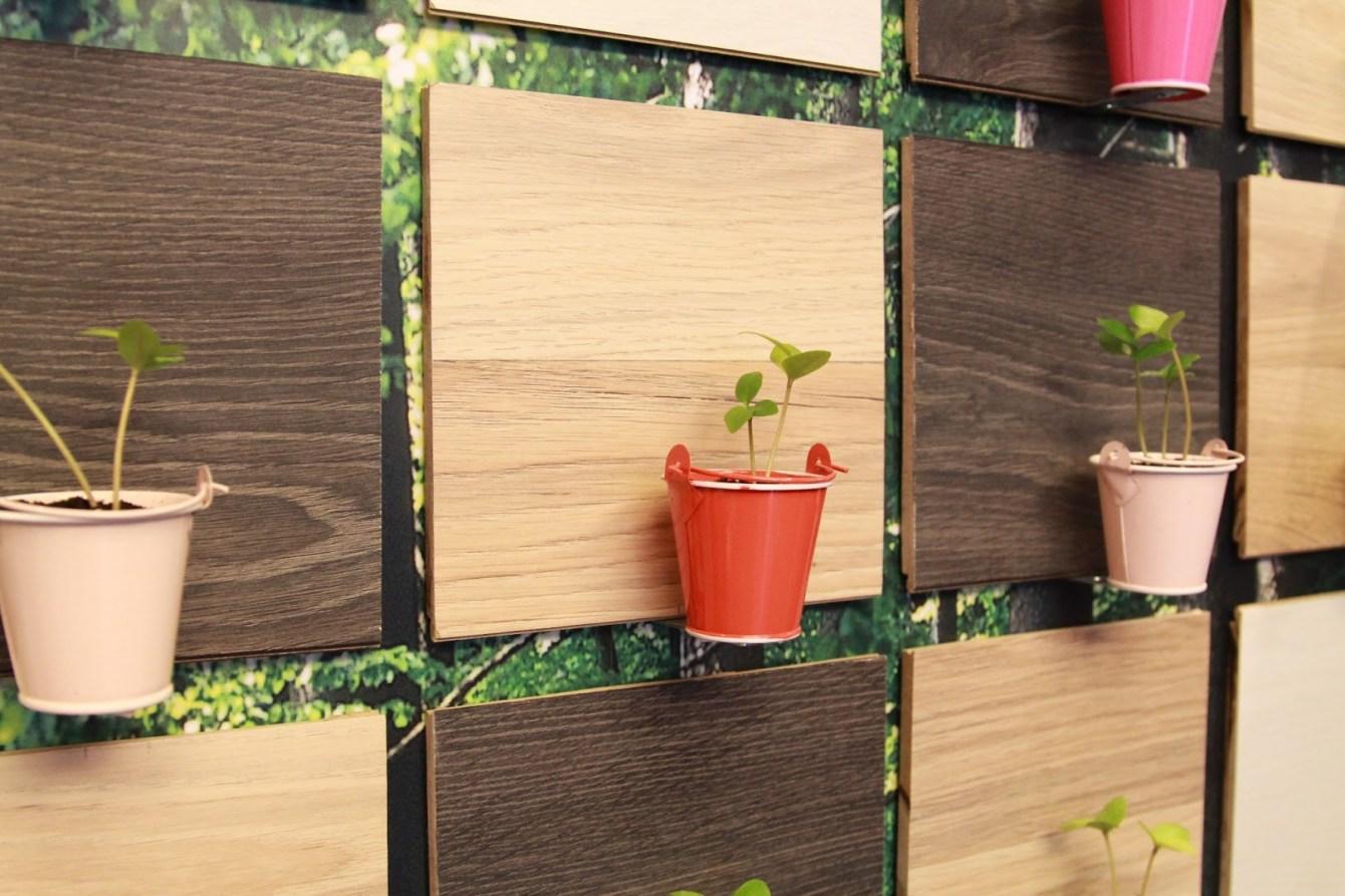 *KRONOswiss環保地板:林志穎為了小小志投資 科諾瑞士 綠建材! 6