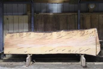 "600  Ambrosia Maple - 4 8/4x 35"" x 27"" Wide x  10'  Long"