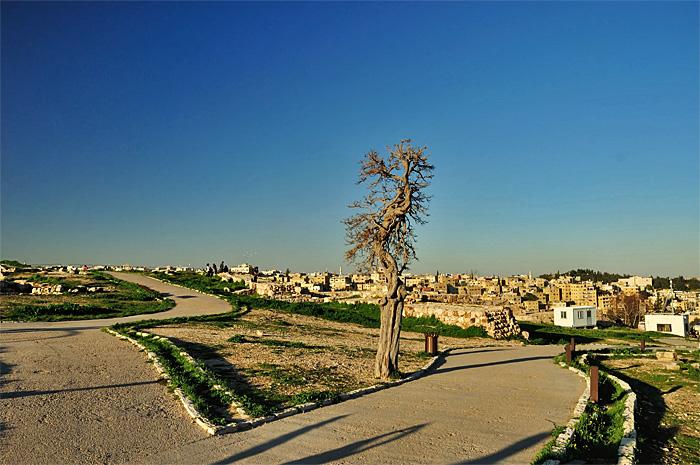 Amman13.JPG