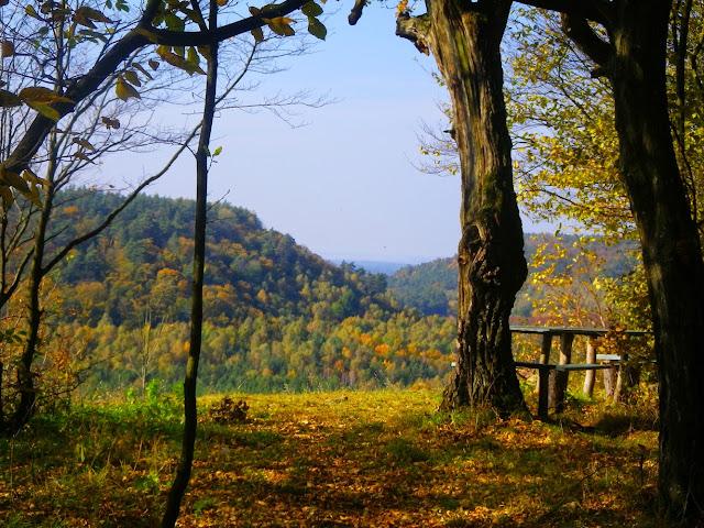 Данилова гора