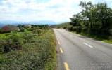 Views on the N69