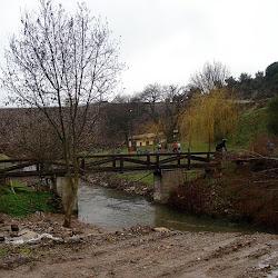 II-BTT-Amendoeiras (41).jpg