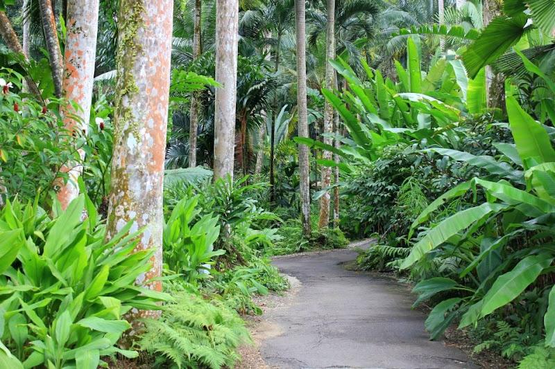 #travelbloggerindia #Singaporetravelblog #Singaporejurongbirdpark