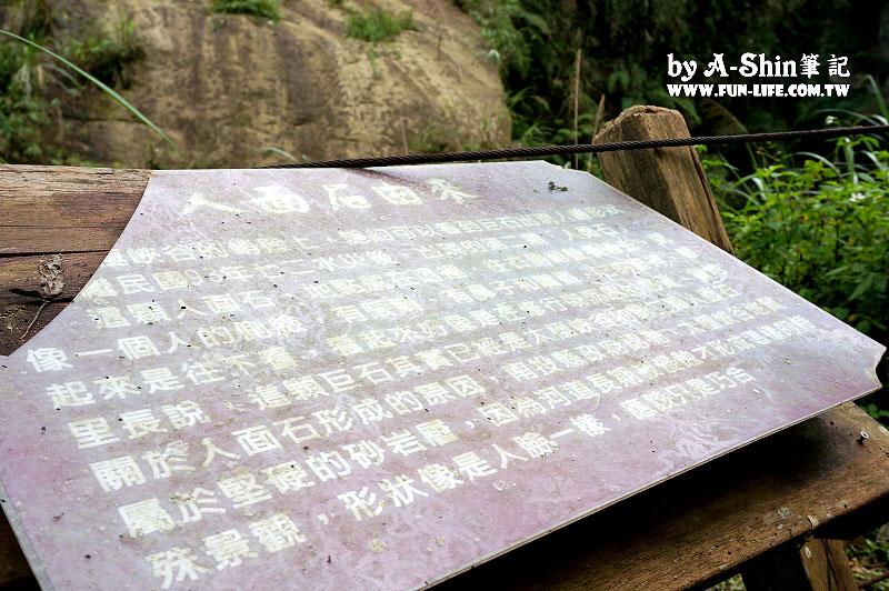 南投竹山遊-竹山天梯-太極峽谷-青龍瀑布42