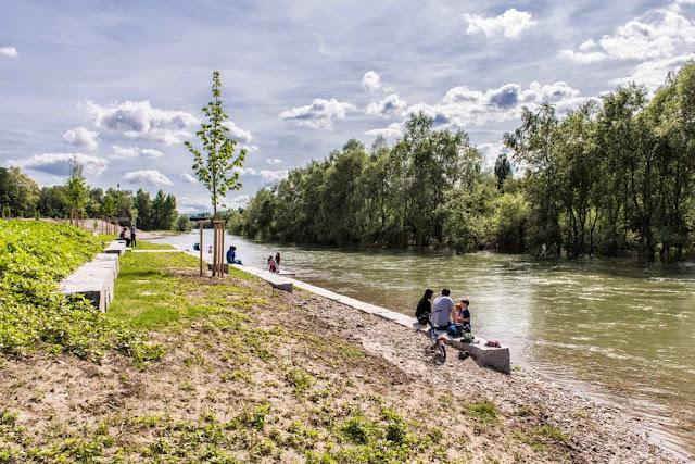 Das neue Rheinufer bei Neuenburg (3/6)
