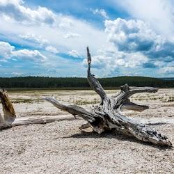 Master-Sirio-Ji-USA-2015-spiritual-meditation-retreat-5-Yellowstone-Park-10.jpg