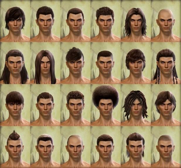 Guild Wars 2 Human Male Hair