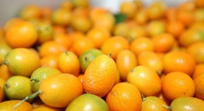 4ba97bdb30794f9a_kumquats_opt
