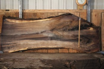 "551  Walnut -5 10/4 x  37"" x  25"" Wide x 8'  Long"