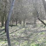 Westhoek Maart 2011 - 2011-03-19%2B15-38-41%2B-%2BDSCF2092.JPG