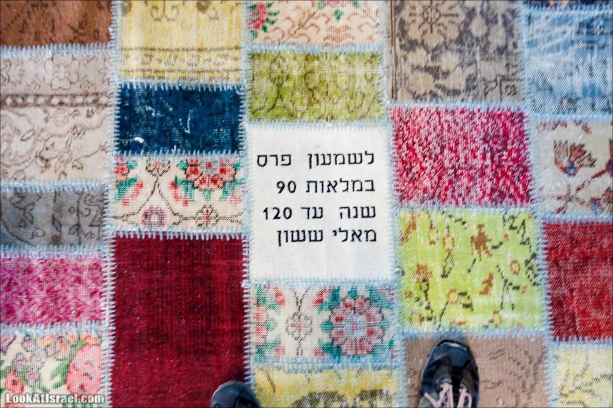 Центр мира Шимона Переса в Яффо | The Peres Center for Peace in Jaffa | LookAtIsrael.com - Фото путешествия по Израилю