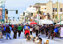 Iditarod2015_0219.JPG