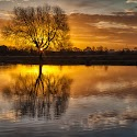 2nd Golden Sunrise_Martin Patten.jpg