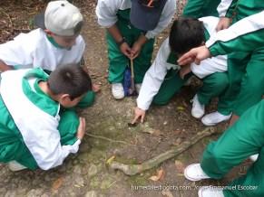 Niños conociendo la musaraña