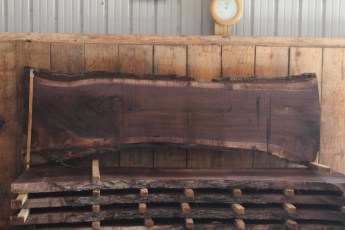 "510 Walnut -6 10/4  x  28"" x  22"" Wide x 8' Long"