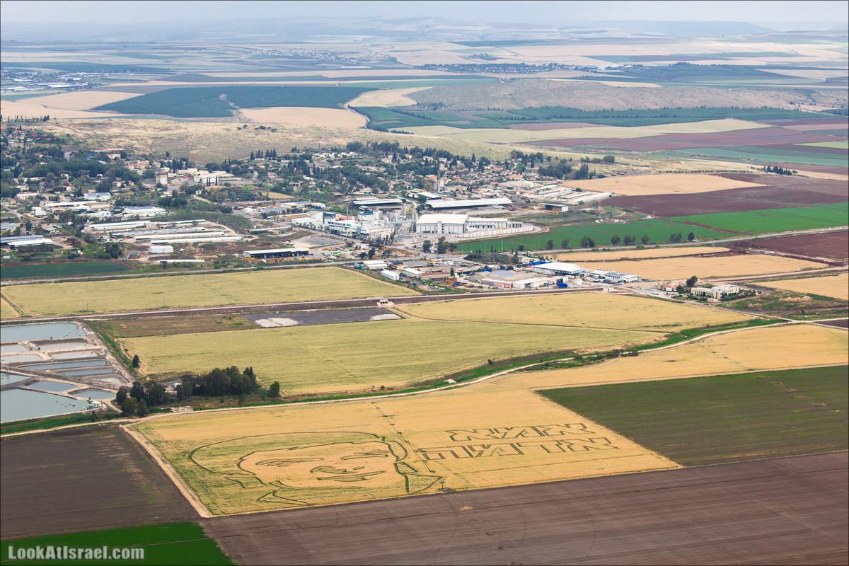 Рисунки на полях в Долине Родников, Израиль   LookAtIsrael.com - Фото путешествия по Израилю и не только...