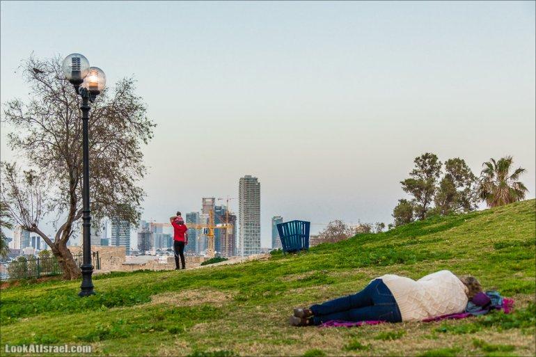 Крошки Тель Авива и тель авивцыLookAtIsrael.com - Фото путешествия по Израилю