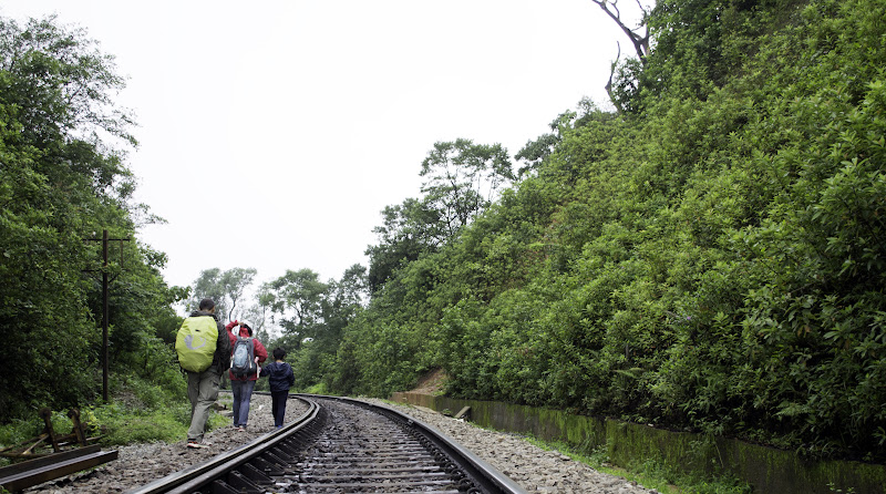 Walking on the Tracks - Doodhsagar Trek