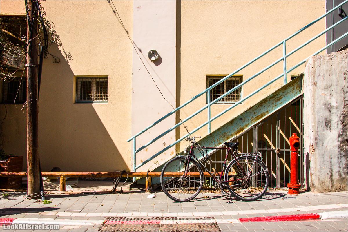 Сюжеты из жизни Тель Авив   Tel Aviv crumbs   LookAtIsrael.com - Фото путешествия по Израилю
