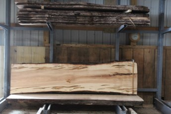 "576  Ambrosia Maple -8 10/4x 35"" x 27"" Wide x  10'  Long"