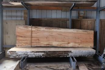 "567  Maple Ambrosia -5 10/4x 35"" x 28"" Wide x  10'  Long"