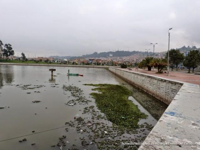 La piscina, tercio alto humedal Tibabuyes