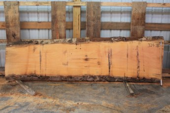 Sycamore 329-10  Length 11', Max Width (inches) 33 Min Width (inches) 24 Thickness 10/4  Notes : Kiln Dried