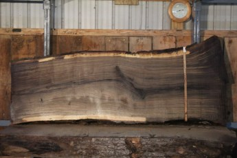 "549  Walnut -6 10/4 x  41"" x  29"" Wide x 8'  Long"