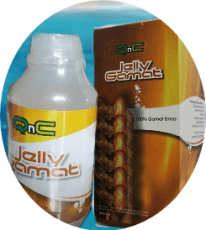 Agen Resmi Jelly Gamat QnC Bandung