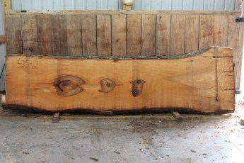 """525 Bass Wood -2 10/4 x 43"""" x 32"""" Wide x 12' Long"""