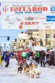 Iditarod2015_0178.JPG